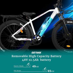 Gotrax 26 pouces Fat Bike 500 watts